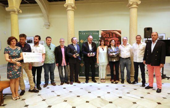 Premios XIII Edición